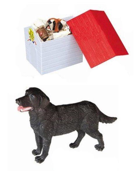3D puzzle Labrador v krabičce
