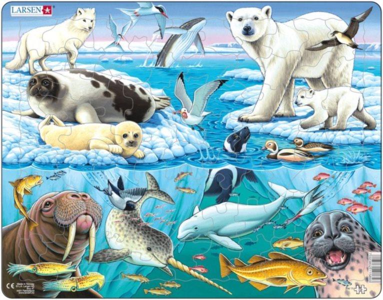 LARSEN Puzzle Arktida 75 dílků