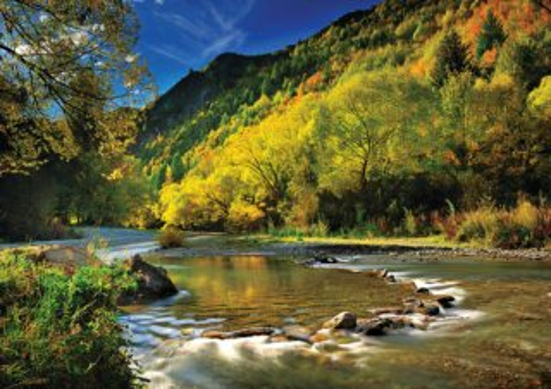 Puzzle TREFL 1000 dílků - Arrow River, Nový Zéland
