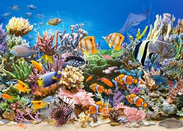 CASTORLAND Puzzle Barvy oceánu 260 dílků