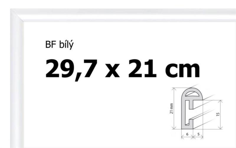 BFHM Plastový rám 29,7x21cm A4 - bílý