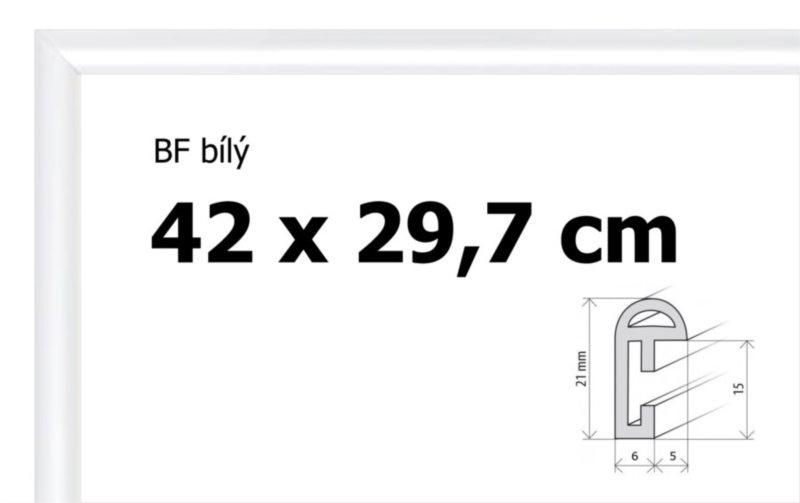 BFHM Plastový rám na puzzle 42x29,7cm A3 - bílý