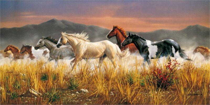 CLEMENTONI Puzzle Divocí koně - Hřmící stádo 13200 dílků