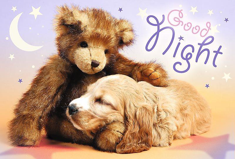 Puzzle pro děti TREFL 60 dílků - Dobrou noc