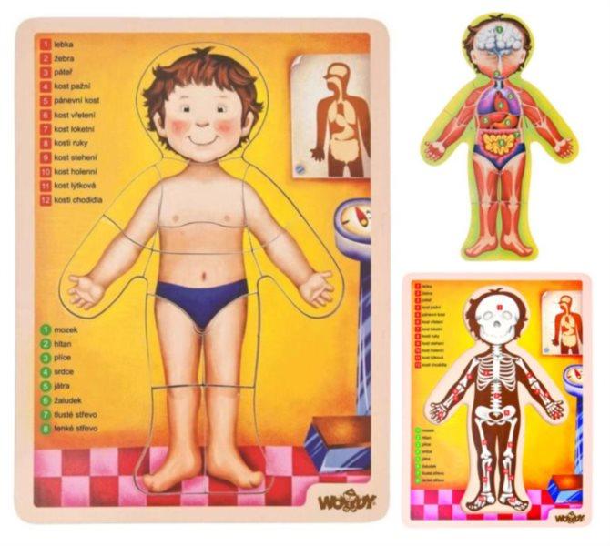 WOODY Dřevěné oboustranné vkládací puzzle Lidské tělo