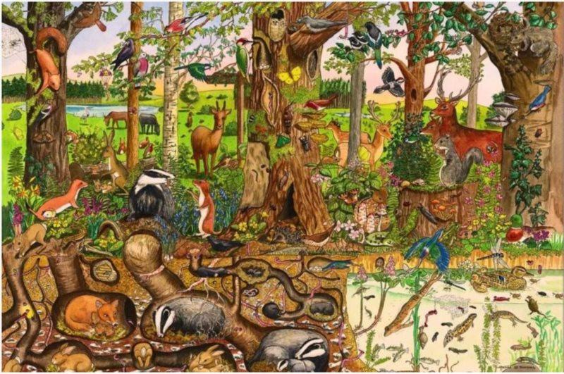BIGJIGS poškozený obal: Dřevěné podlahové puzzle Lesní svět 24 dílků