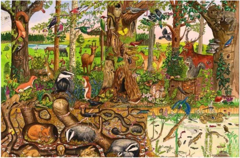 BIGJIGS Dřevěné podlahové puzzle Lesní svět 48 dílků