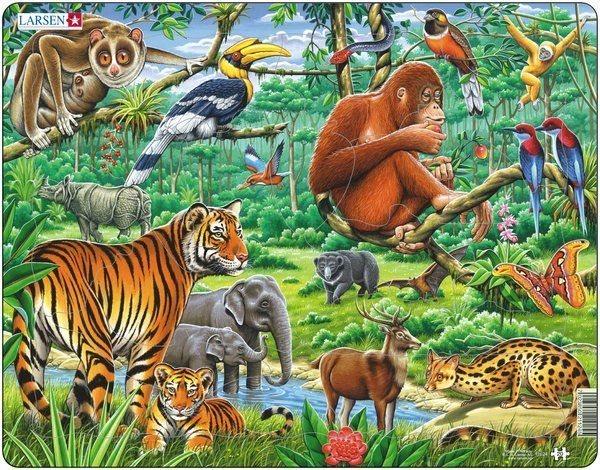 LARSEN Puzzle Džungle 20 dílků