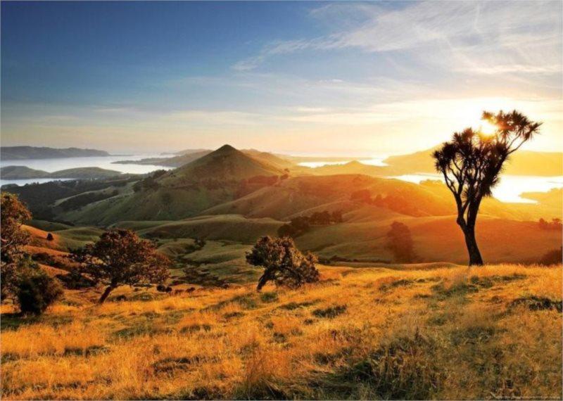 Puzzle HEYE 1000 dílků - Harbour Cone, Nový Zéland
