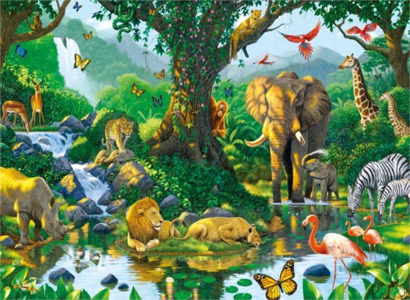 Puzzle RAVENSBURGER 500 dílků - Ch.Hiett, Harmonie v džungli