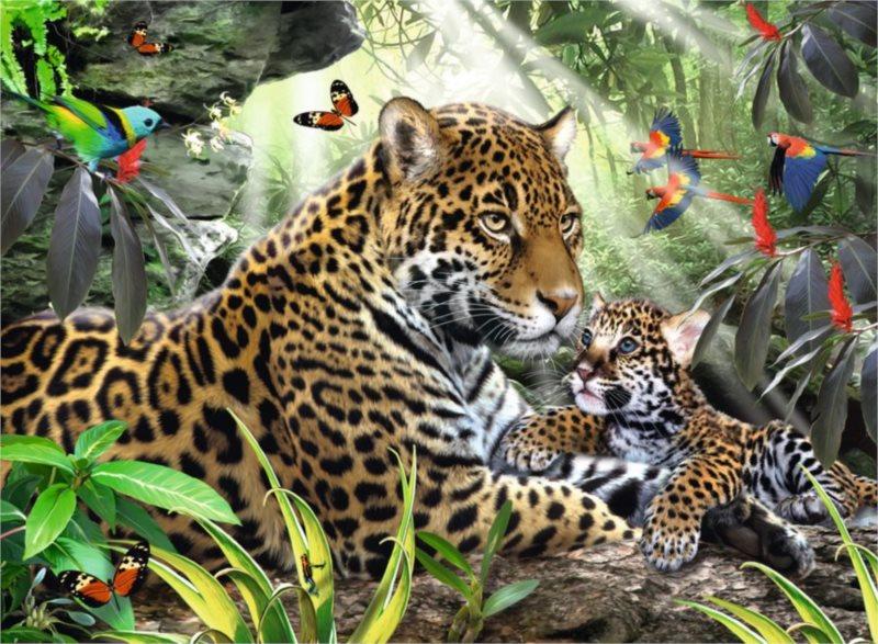 RAVENSBURGER Puzzle Jaguáří mládě 500 dílků