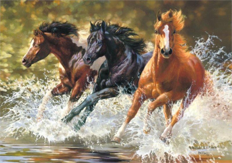 CASTORLAND Puzzle Koně ve vodě 500 dílků
