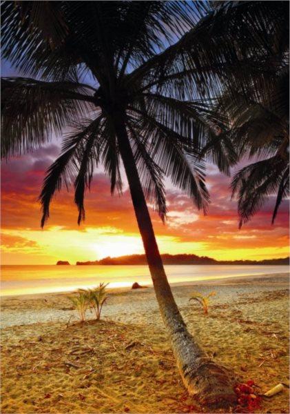 DINO puzzle 500 dílků - Kostarika: Západ slunce