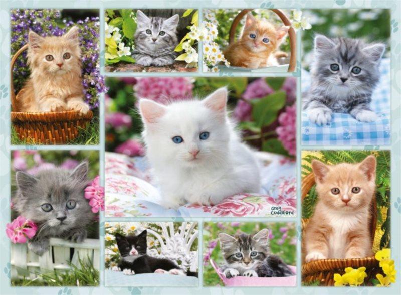 RAVENSBURGER Puzzle Koťátka 500 dílků