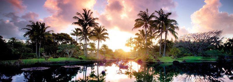 HEYE Panoramatické puzzle Palmy, Havaj 2000 dílků