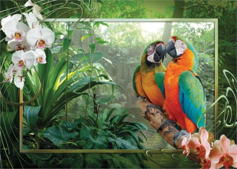 Puzzle RAVENSBURGER 1000 dílků - Papoušci v džungli