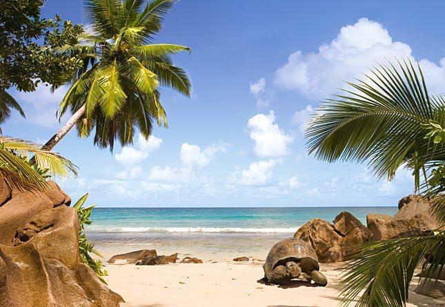 CASTORLAND Puzzle Pláž Paradise Beach 1000 dílků