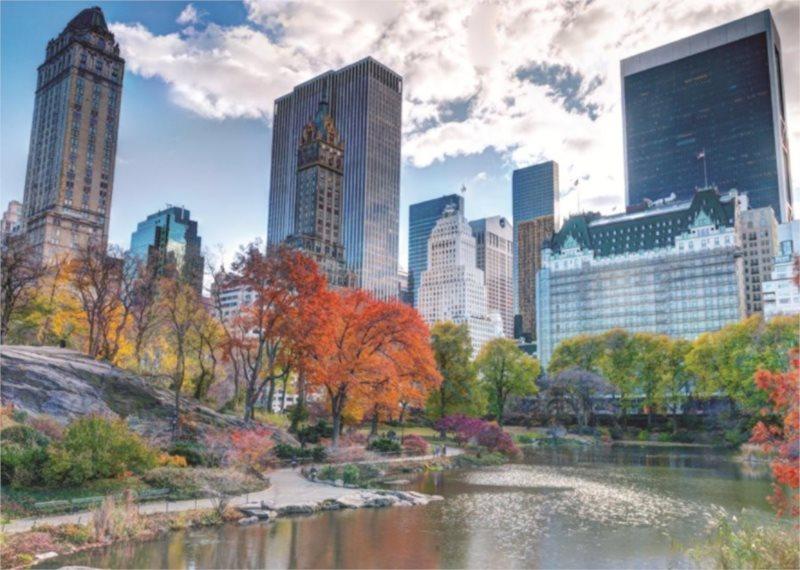 JUMBO Puzzle Central Park, New York 1000 dílků