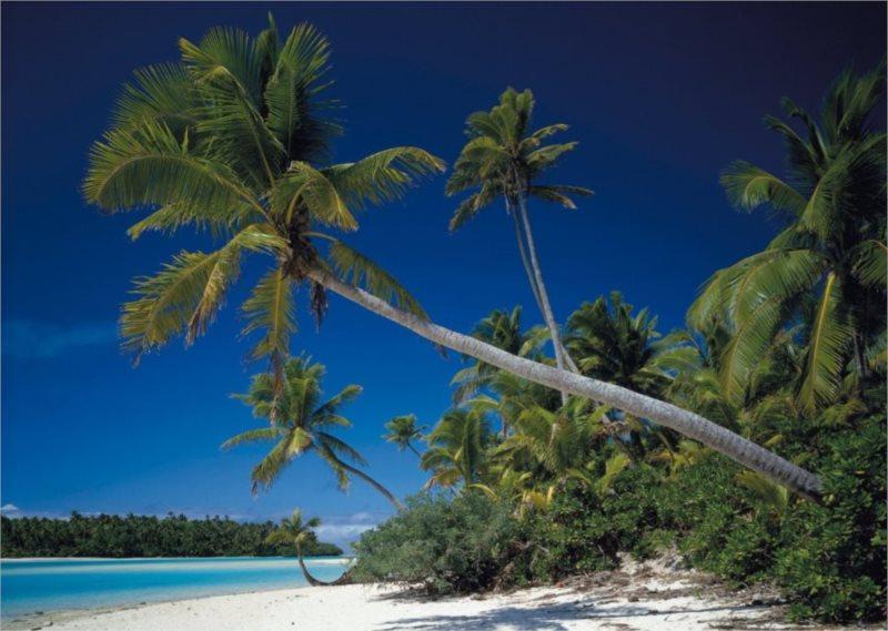 Puzzle SCHMIDT 1000 dílků - Cookovy ostrovy