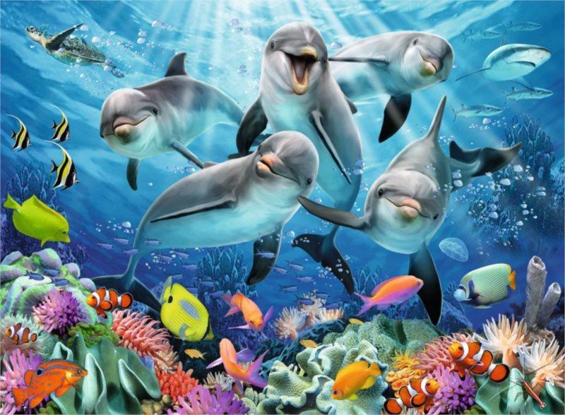 RAVENSBURGER Puzzle Delfíni u korálového útesu 500 dílků