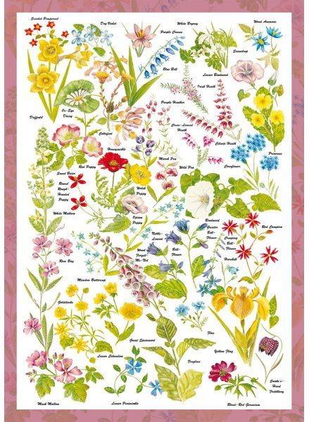 Puzzle SCHMIDT 59566 Divoké květiny 1000 dílků