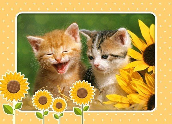 CASTORLAND Puzzle Dvě koťata se slunečnicemi 60 dílků