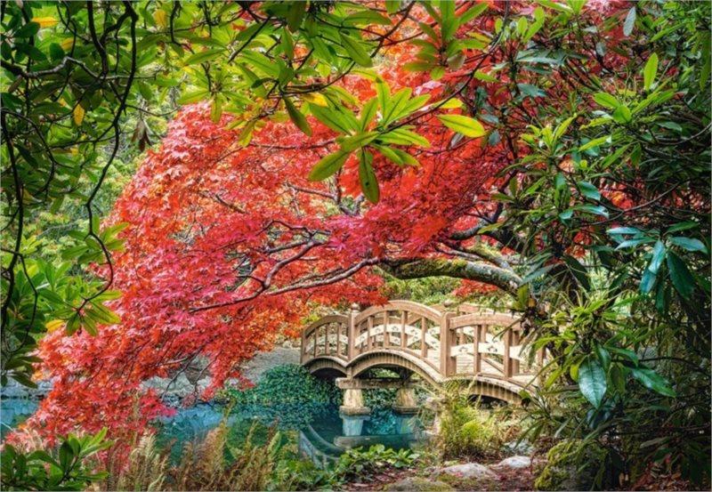 Puzzle CASTORLAND 103768 Japonská zahrada 1000 dílků