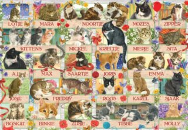 JUMBO puzzle 1000 dílků - Kočičí jubileum