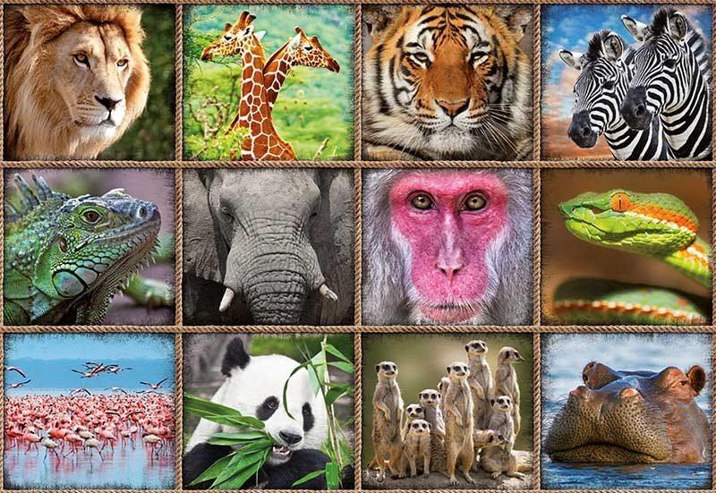 EDUCA Puzzle Koláž divokých zvířat 1000 dílků