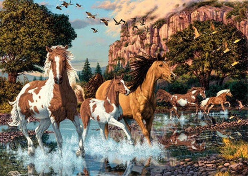 Puzzle DINO Secret Collection 1000 dílků - Koně