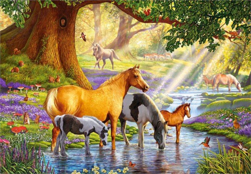 CASTORLAND Puzzle Koně u potoka 1000 dílků