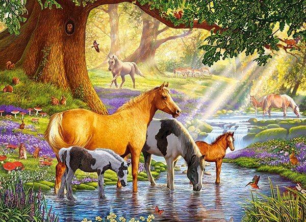 CASTORLAND Puzzle Koně v říčce 300 dílků