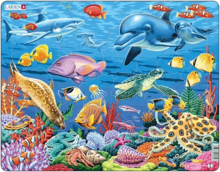 LARSEN Puzzle Korálový útes 35 dílků