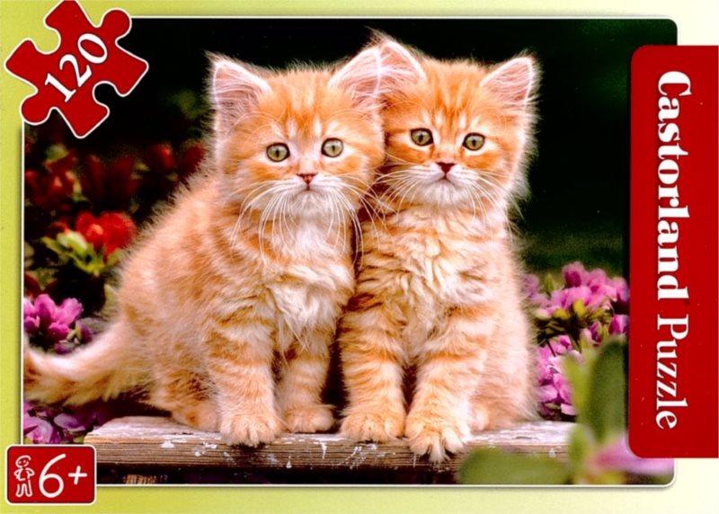 CASTORLAND Puzzle Koťata na lavičce 120 dílků
