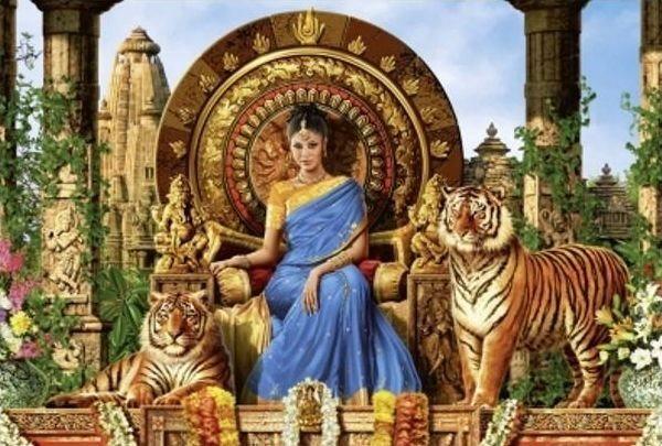 Puzzle SCHMIDT 500 dílků - Královna tygrů