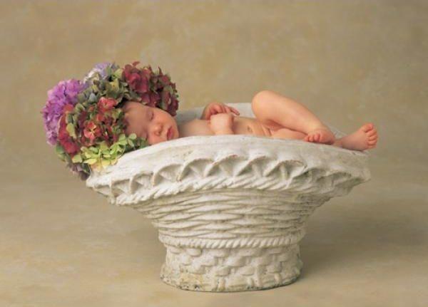 Puzzle SCHMIDT 1000 dílků - Květinová siesta