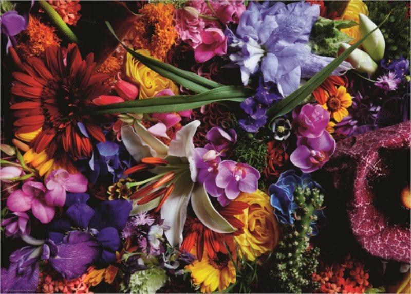 HEYE Puzzle Květiny: Lilie 1000 dílků