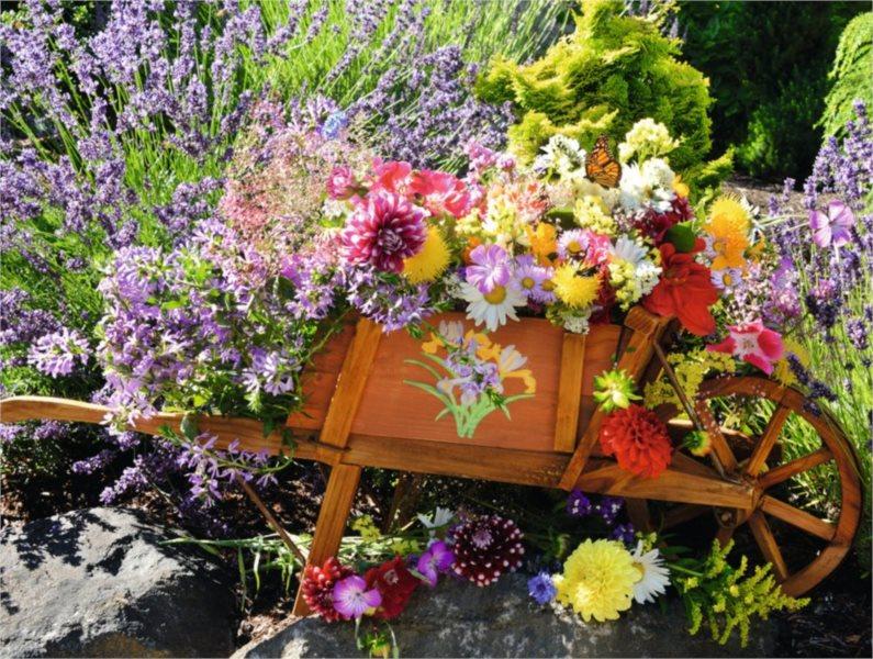 RAVENSBURGER Puzzle Letní kytice XXL 500 dílků