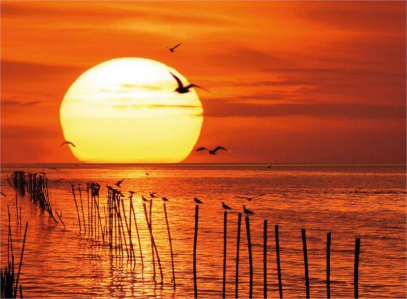 Puzzle RAVENSBURGER 500 dílků - Magický západ slunce