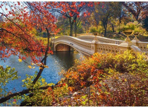 SCHMIDT Puzzle Most v Central Parku, New York 1000 dílků