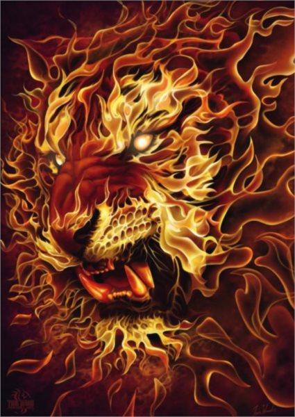 SCHMIDT Puzzle Ohnivý tygr 500 dílků
