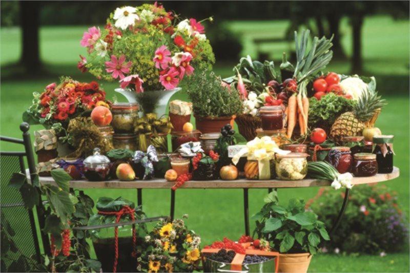 Puzzle JUMBO 18582 Ovoce a zelenina 1500 dílků
