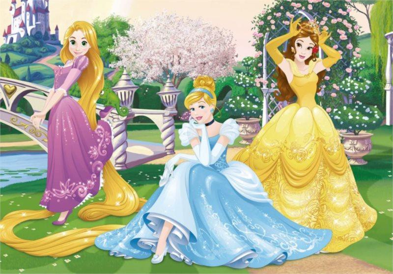 DINO Puzzle Princezny v zahradě 66 dílků