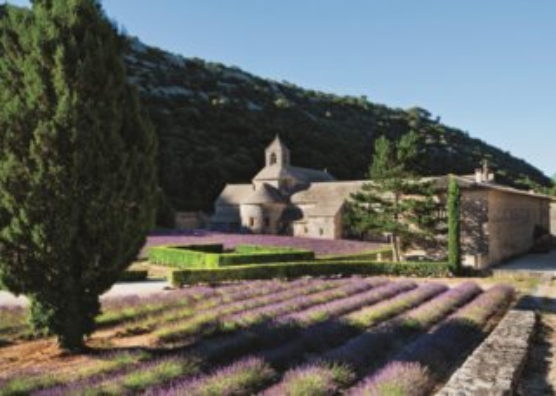 JUMBO puzzle 1000 dílků - Provence, Itálie
