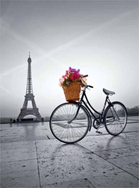 CLEMENTONI Puzzle Romantická promenáda v Paříži 500 dílků