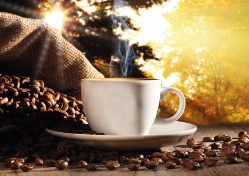 Puzzle, imitace dřeva RAVENSBURGER 1200 dílků - Čas na kávu