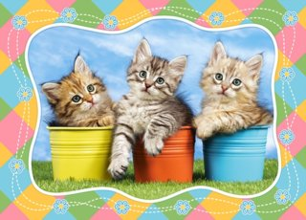 CASTORLAND Puzzle Sibiřská koťata v květináčích 60 dílků