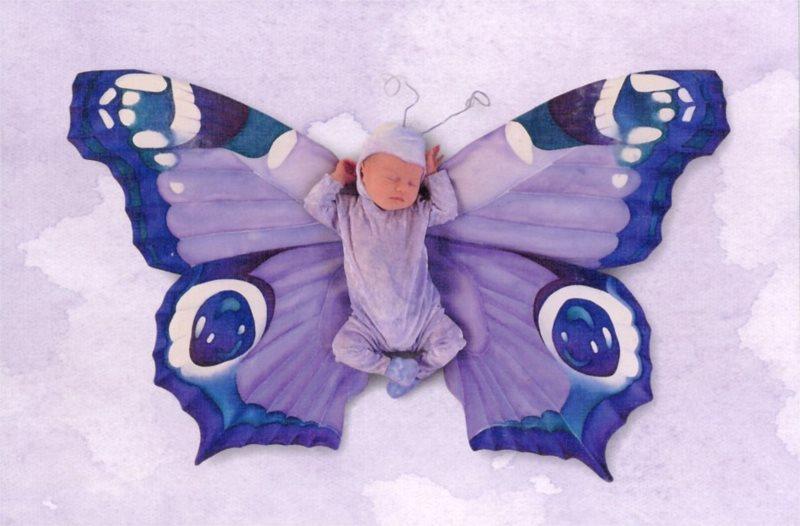 Puzzle SCHMIDT 500 dílků - A. Geddes: Motýlek