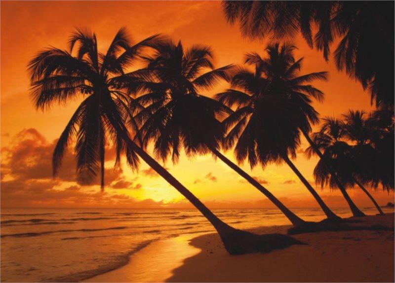Puzzle SCHMIDT 500 dílků - Tropický západ slunce