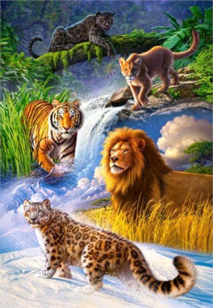 CASTORLAND Puzzle Velké kočky 1000 dílků
